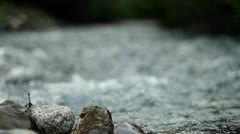 Flowing water down stream Stock Footage