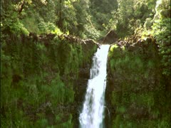 Akaka Falls, Hawaii Stock Footage