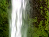 Stock Video Footage of Akaka Falls, Hawaii