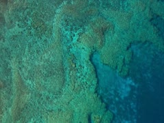 Kealakekua Coastline Stock Footage