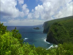 Pololu Valley Stock Footage
