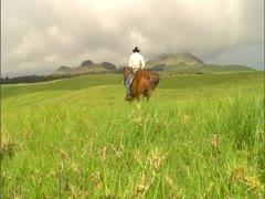 Paniolo Riding Horseback Stock Footage