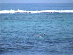 Snorkeling Kahalu'u Beach Park Stock Footage