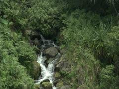 Hamakua Coast Waterfalls Stock Footage