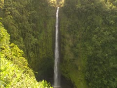 Akaka Falls on Kolekole Stream Stock Footage