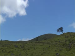 Kohala District Cinder Cone - stock footage