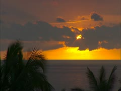 Sunset with Clouds and Palm Trees Stock Footage