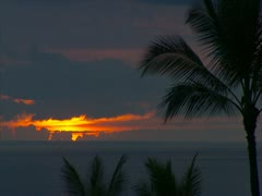 Sunset with Clouds and Palm Trees - stock footage