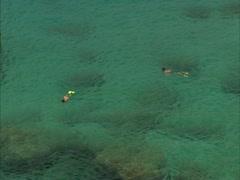 Snorkeling in Waimea Bay Stock Footage