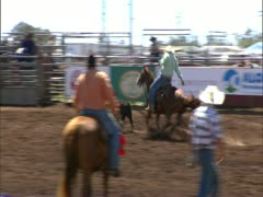 Paniolo Roping Calf Stock Footage