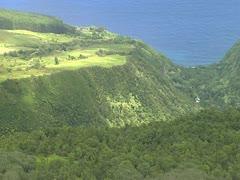 Hamakua Coast Gulch Stock Footage