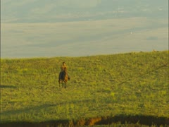 Cowboy on Ranchland Stock Footage