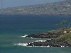 Kohala Coastline and Keawe Tree Stock Footage