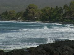 Secluded Bay with Homes - stock footage