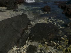 Hawaii Coastline and Kohala Mountain Stock Footage