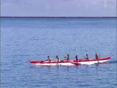 Outrigger Canoe Paddlers Stock Footage