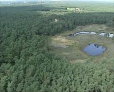 Aerial shot Ven or shallow puddle in forest, - stock footage