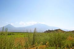 Stock Photo of khor virap church and mountain ararat