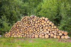 Wood stacked for drying in the woodpile Stock Photos