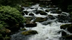 Powerful Flowing Wild Forest River - 25FPS PAL Stock Footage