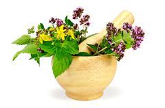 herbs in a mortar - stock photo