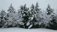 Heavy snowfall landscape Stock Footage