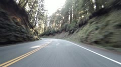 Driving through Redwoods Fast Realtime Jedediah Smith 4 Stock Footage
