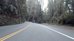 Driving through Redwoods Fast Realtime Jedediah Smith 5 Stock Footage