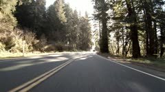 Driving through Redwoods Fast Realtime Jedediah Smith 6 Stock Footage