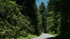 Cars drive on a road through the Redwood forests of California. - stock footage