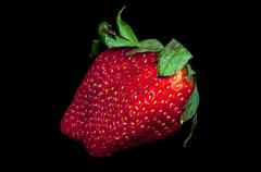 fresh red strawberry isolated on a black background - stock photo
