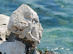 Weird stone Stock Photos