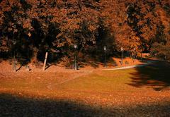 Autumn in the park Stock Illustration
