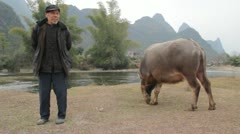 Wide Guilin China grazing water buffalo Chinese farmer by river bank countryside Stock Footage