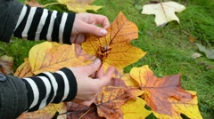 Hands make decorative flower beautiful autumn tree leaf Stock Footage