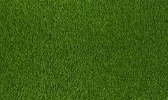 Stock Illustration of grass texture