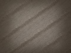 alligator skin with stripes: useful as background or texture - stock illustration