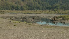 Sibalom river in the Republic of the Philippines Stock Footage