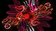 VJ-Set-Color-Explosion-Loop 20 Stock Footage
