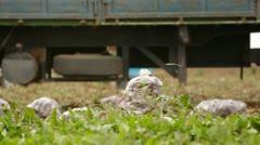 Truck On Field Stock Footage