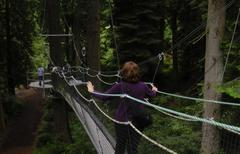 Suspension bridge in forest Stock Photos