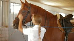 Animal Trainer And Horse Stock Footage