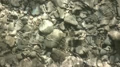 Water Flowing Over A Stoney Riverbed 5 Stock Footage