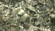Stock Video Footage of Water Flowing Over A Stoney Riverbed 5