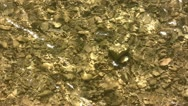 Stock Video Footage of Water Flowing Over A Stoney Riverbed 6