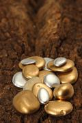 gold pebble contemplation of richness - stock photo