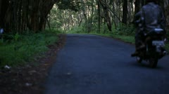 Traffic on the road in the rainforest. - stock footage