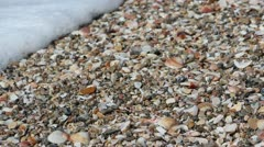 Wave over sea shells Stock Footage
