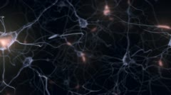 Firing Neurons (looping) Stock Footage
