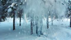 Man is shaking a snow from a tree, and the flaky snow is falling down (SLOW) Stock Footage